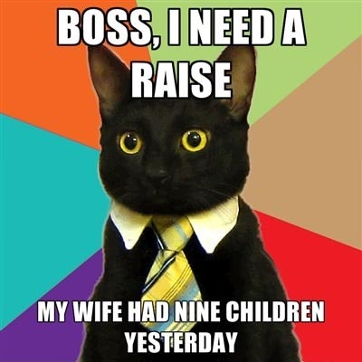 Executive Cat Meme